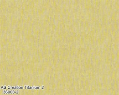 AS_Creation_Titanium_2_36003-2_k.jpg
