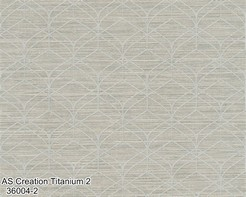 AS_Creation_Titanium_2_36004-2_k.jpg