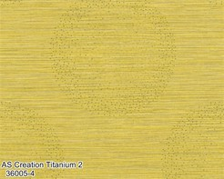 AS_Creation_Titanium_2_36005-4_k.jpg