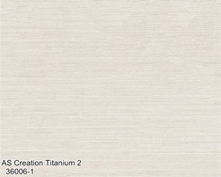 AS_Creation_Titanium_2_36006-1_k.jpg