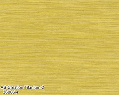AS_Creation_Titanium_2_36006-4_k.jpg